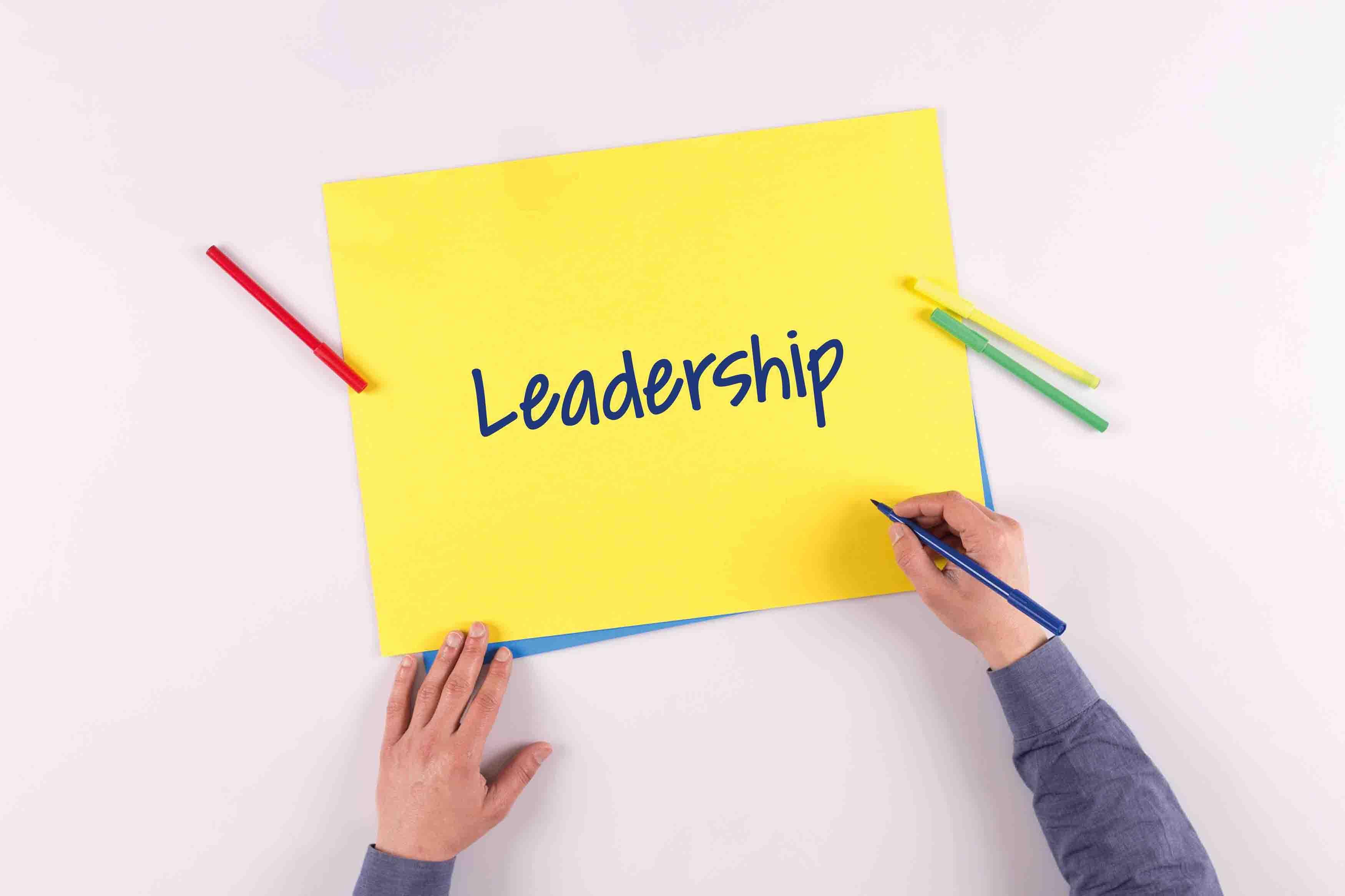 Healthcare Industry Leadership